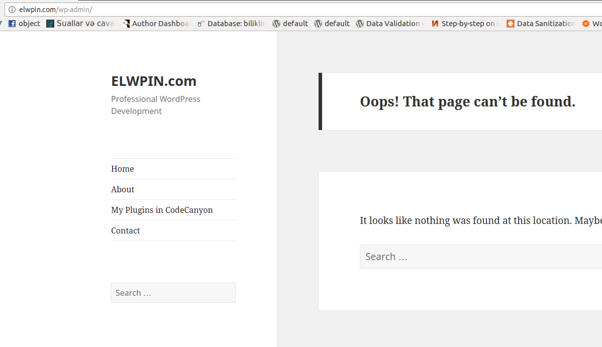 not-found-page-wordpress